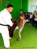 Karate w Uniwersytecie Przedszkolaka (styczeń 2020r.)